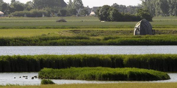 Belangrijk broedgebied bij Harlingen